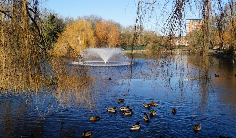 Central Park Chelmsford
